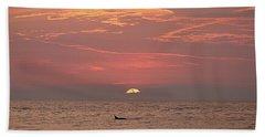 Dolphin Swims At Sunrise Beach Sheet