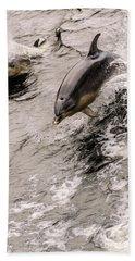 Dolphins Beach Towel by Werner Padarin