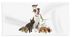 Domestic Pets Group Together With Copy Space Beach Sheet
