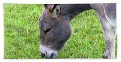 Beach Towel featuring the photograph Donkey Closeup Portrait by Jit Lim