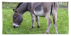 Beach Towel featuring the photograph Donkey Farm Animal by Jit Lim