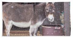 Donkey Watching It Snow Beach Sheet