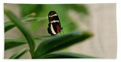 Doris Longwing Butterfly Beach Towel