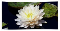 Dotty White Lotus And Lily Pads 0030 Dlw_h_2 Beach Towel