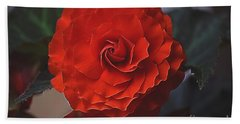 Double Begonia Bloom Beach Towel