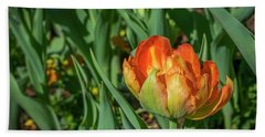 Double Multicolor Tulips Beach Sheet