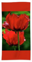Double Red Poppies Beach Towel