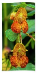Double Shot Of Jewelweed Beach Towel by Barbara Bowen