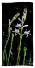 Double Tuberose In Bloom Beach Towel