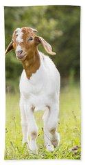Dougie The Goat Beach Towel