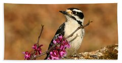Downy Woodpecker In Spring Beach Sheet by Sheila Brown