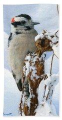 Downy Woodpecker  Beach Towel by Ken Everett
