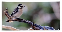 Beach Towel featuring the photograph Downy Woodpecker With Snow by Daniel Reed