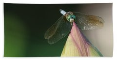 Dragon Fly Lotus Beach Towel