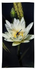 Dragon Fly On Lily Beach Sheet by John Rivera