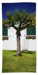 Dragon Tree Garden House Beach Towel