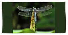 Dragonfly 1 Beach Towel