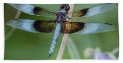 Dragonfly 12 Beach Towel