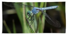 Dragonfly 13 Beach Towel