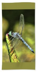 Dragonfly 2 Beach Towel
