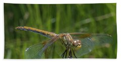 Dragonfly 7 Beach Towel