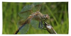 Dragonfly 8 Beach Towel