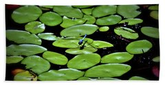 Beach Towel featuring the photograph Dragonfly Among The Lily Pads by Tara Potts