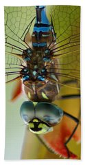 Dragonfly In Thought Beach Sheet