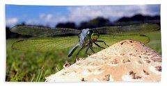 Dragonfly On A Mushroom Beach Sheet by Chris Mercer