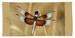 Beach Towel featuring the photograph Dragonfly On Reed by Sheila Brown
