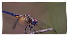 Dragonfly On Twig Beach Towel