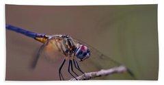 Dragonfly On Twig Beach Sheet