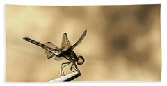 Dragonfly Resting On The Clothesline Beach Sheet by Odon Czintos