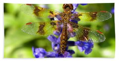 Beach Towel featuring the photograph Dragonfly by Sandi OReilly