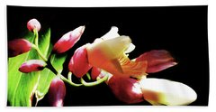 Dramatic Oriental Orchid Beach Towel