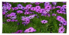 Dreaming Of Purple Daisies  Beach Sheet