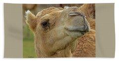 Dromedary Or Arabian Camel Beach Towel