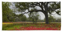Beach Towel featuring the photograph Drummonds Phlox Meadow Near Leming Texas by Tim Fitzharris
