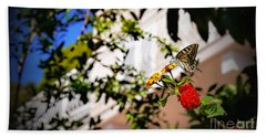 Dubrovniks Butterfly Beach Towel