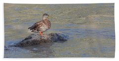 Duck Alone On The Rock Beach Towel