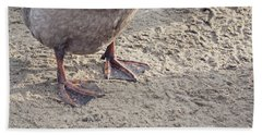 Beach Towel featuring the photograph Duck Feet In The Sand by Cindy Garber Iverson
