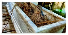 Duck On The Dock Beach Sheet