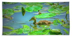 Beach Towel featuring the photograph Duckling In The Green. by Leif Sohlman
