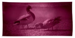 Ducks #1 Beach Sheet