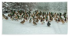 Ducks Pond In Winter Beach Towel