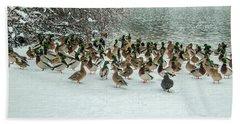 Ducks Pond In Winter Beach Sheet