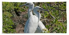 Dueling Egrets Beach Sheet by Kenneth Albin