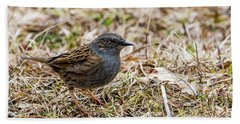 Beach Towel featuring the photograph Dunnock by Torbjorn Swenelius