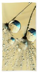 Duo Shower Dandy Drops Beach Towel by Sharon Johnstone