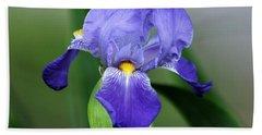 Dwarf Iris 9834_2 Beach Towel